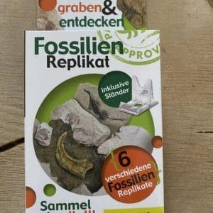 Set: Entdecker Filzschnüre mit passenden Schneckenband und Fossilien Replikat nach Wahl 5 SanjaNatur