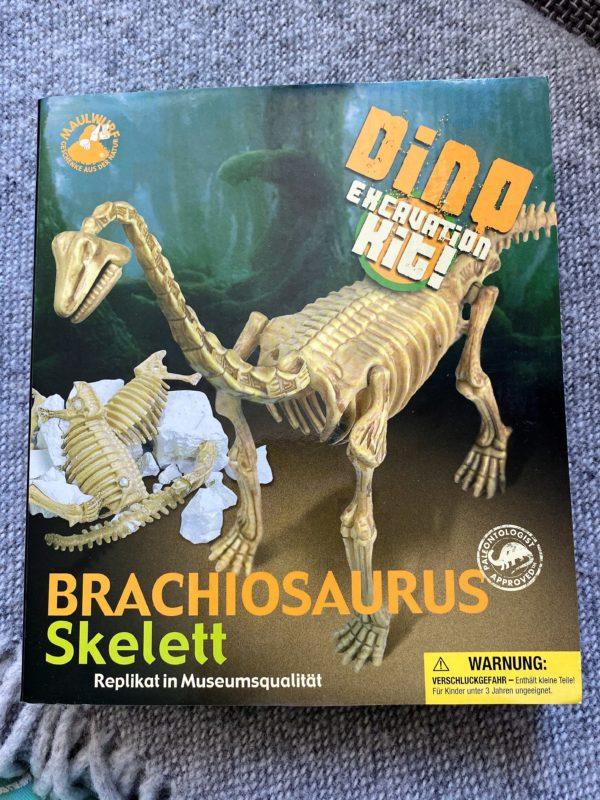 großes Grabungs-Set Brachiosaurus 1 SanjaNatur