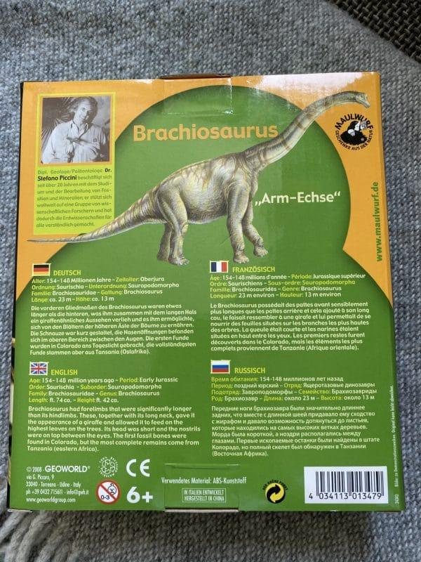 großes Grabungs-Set Brachiosaurus 3 SanjaNatur