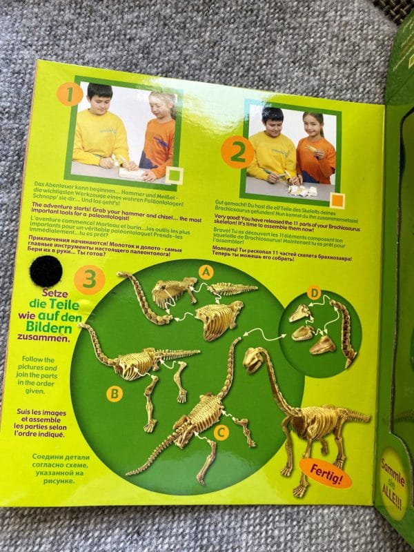 großes Grabungs-Set Brachiosaurus 2 SanjaNatur