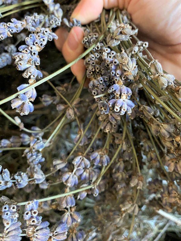 Heilstein - Lavendel Kissen - Ruhe und Zufriedenheit 5 SanjaNatur
