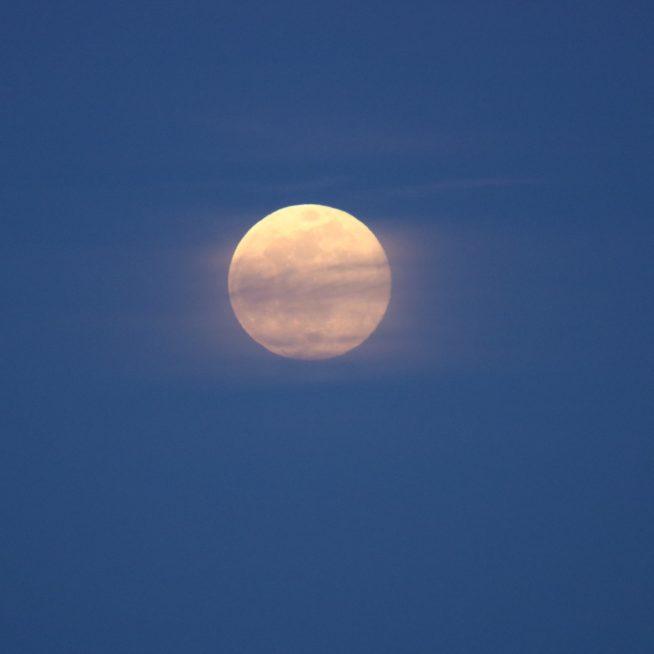 full-moon_t20_B8WmmZ
